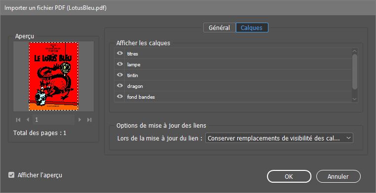 fenêtre de PDF Options Editor